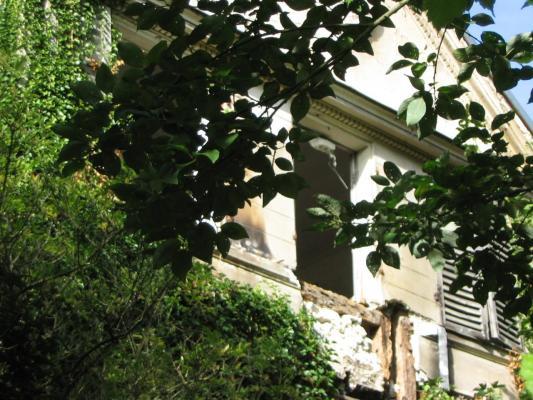 Photo 1336 2010